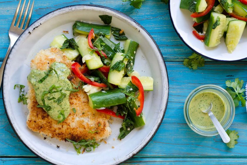 Recent Meal Eating regimen Supply Vs Meal Substitute Diets – Which Is Finest For You?
